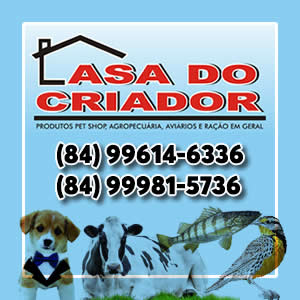 Casa do Criador lateral